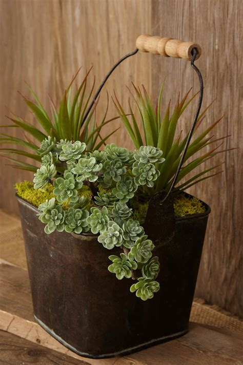 fill  home  glamorous simple diy succulent