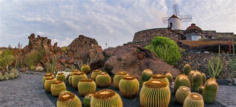 cactus garden lanzarote museums  tourist centres