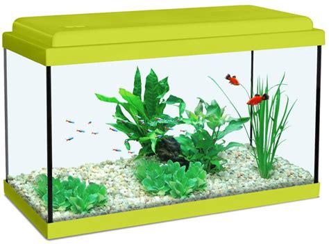 d 233 cor aquarium vert