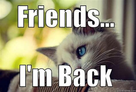 Im Back Meme - cute kitty quickmeme