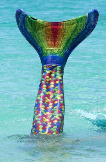 serenas rainbow reef mermaid tail finfriends