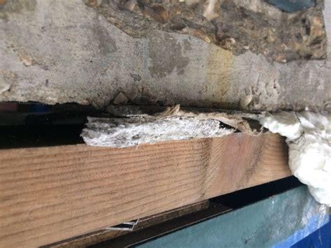 asbestos  twitter aib window packer window