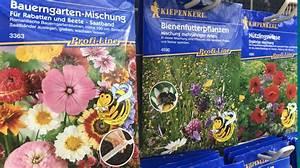 Welche Blumen Für Bienen : bienenfreundliche pflanzen f r garten und balkon mencke gartencenter ~ Eleganceandgraceweddings.com Haus und Dekorationen