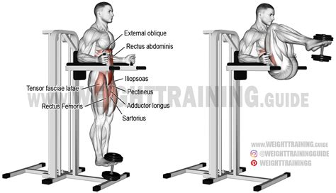 chair leg raises muscles weighted captain s chair leg and hip raise exercise