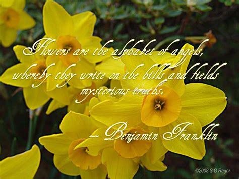 quotes  rain  flowers quotesgram