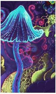 Mushroom Wallpapers - Top Free Mushroom Backgrounds ...