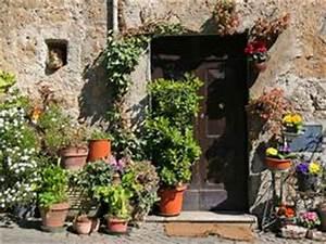 Palmenarten Für Draußen : k belpflanzen welche eignen sich besonders gut bei ~ Michelbontemps.com Haus und Dekorationen