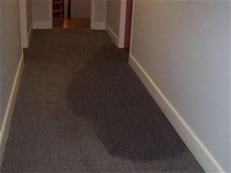 Wet Carpeting  Hallway