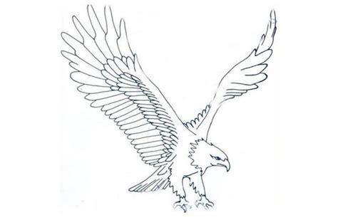 sketsa gambar burung elang ini teknik mewarnainya