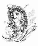 Coloring Pages Adult Adults Animal Winter Drawings Burning Wood Stencils Animals Hedgehog Holidays Behance Kleuren Voor Volwassenen Colouring Digi Stamps sketch template