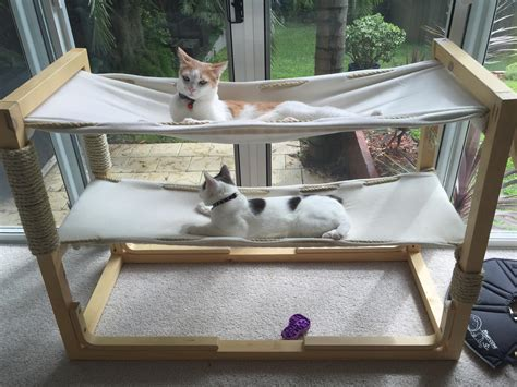 cat hammock diy build bunk bed hammocks for your cats make