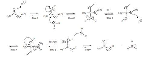mechanism   acid catalyzed hydrolysis   ester