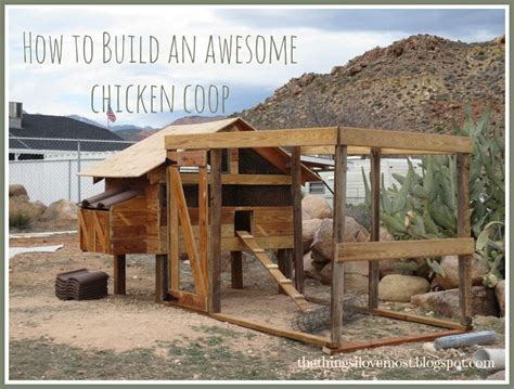 awesome chicken coops how to build an awesome chicken coop for the home pinterest