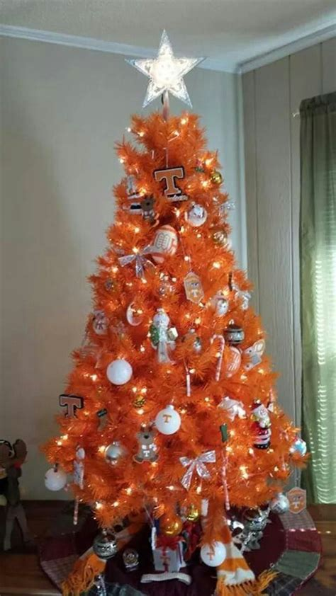 orange smell christmas tree 1000 ideas about orange tree on trees ornament and