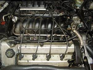 Cadillac Deville Engine Diagram  Cadillac  Free Engine Image For User Manual Download