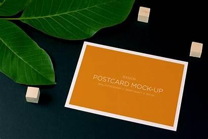 Postcard Mockup Psd Nature Plant Mockups Mockupworld