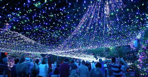 the world s largest christmas lights display is coming to