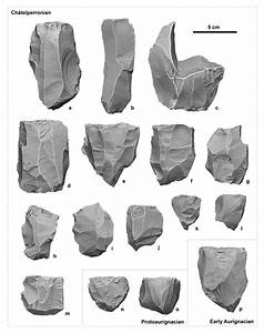 Models Of Lithic Cores From Les Cott U00e9s Displayed Using