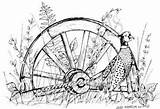 Wagon Wheel Rubber Stamp Pheasant Wheels Coloring Northwoods Drawings Drawing Pencil Bird Wooden Stamps Pattern Wood Franticstamper Spoon sketch template