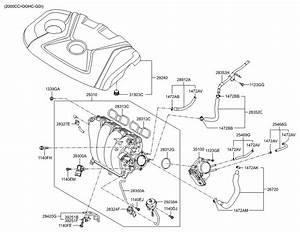 Gr 1618  2014 Hyundai Elantra Engine Diagram Schematic Wiring