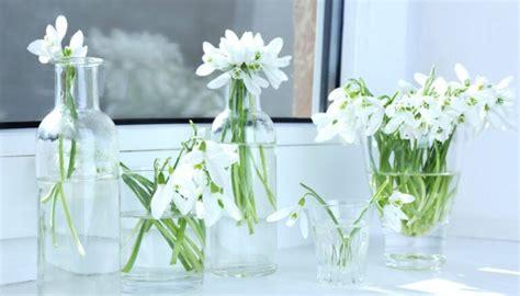 Pavasara augi - Tēmas - DELFI