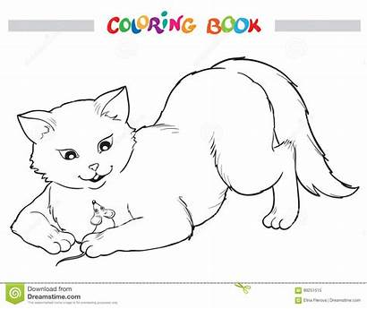Mouse Coloring Outline Dreamstime Cat