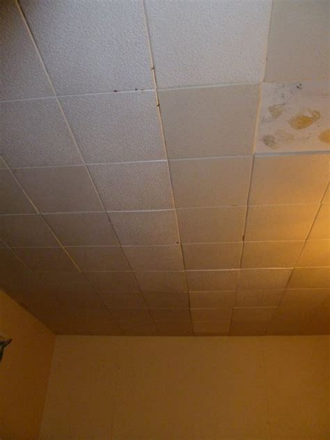 Polystyrene Ceiling Tiles by Polystyrene Ceiling Tiles And Finish Ceiling