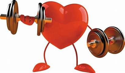 Stronger Healthy Muscles Heart Health Pump Sudden