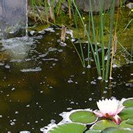 Garten Gestalten Ludwigsburg by Martin Krickl Gartenbau Markgr 246 Ningen Gartengestaltung