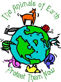 eco earth  world care groups