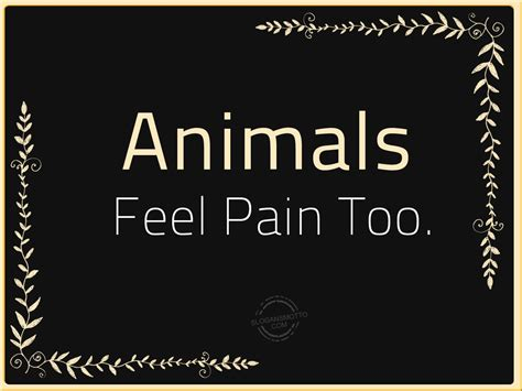 slogans  cruelty  animals