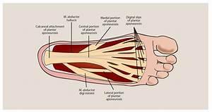 multiple sclerosis chronic pain management