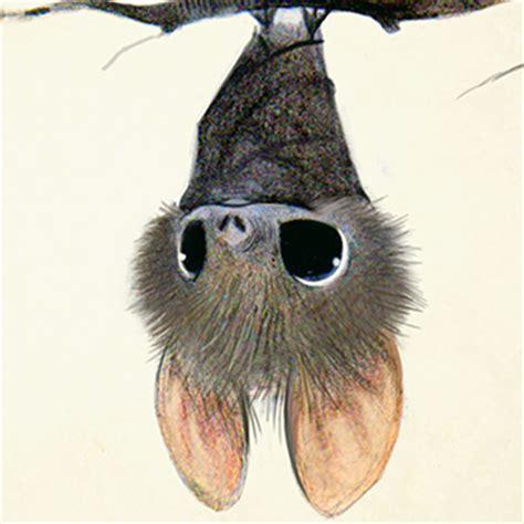 sydney hanson childrens book illustrator  production