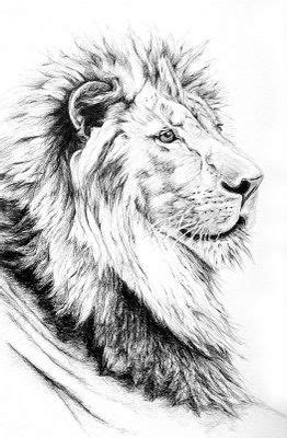 Big Five on | Lion tattoo, Black and grey tattoos, Lion
