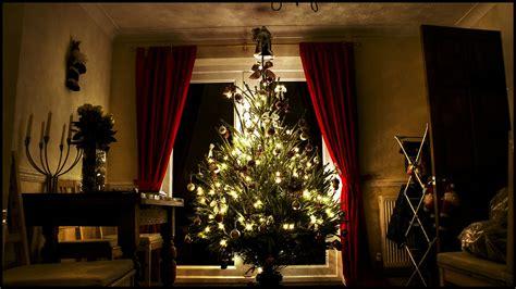 christmas tree     christmas tree  sits