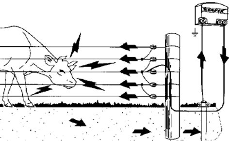 A Diagram To Wire A Electric Fence For by How An Electric Fence Works