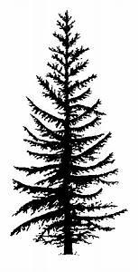 Cedar Tree Silhouette - ClipArt Best