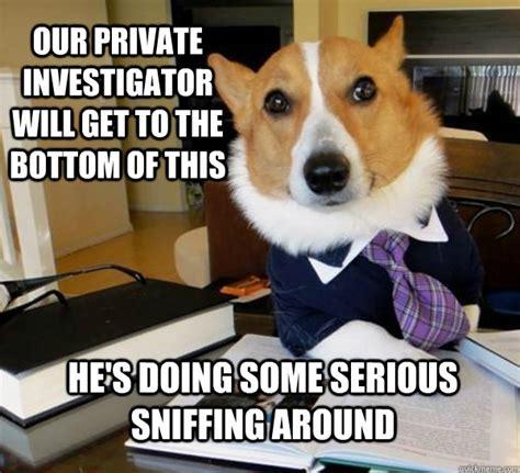 Investigator Meme - career memes of the week private investigator careers siliconrepublic com ireland s