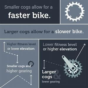 Bike Gearing 101  Understanding Gearing  Cassette  And