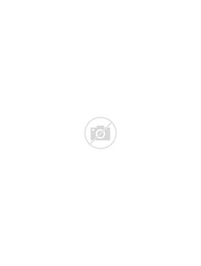 Pig Clip Clipart Cartoon Pink Simple Guinea