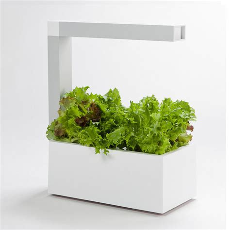 modern planting pods indoor garden accessory