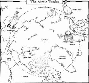 arctic worksheet math | few activities using a map of the ...