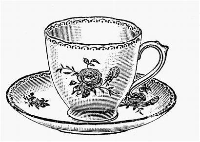 Tea Teacup Cup Tattoo Cups Teacups Illustrations