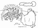 Moses Burning Bush Coloring Sunday Printable Bible Crafts Craft God Activities Children Template Lesson Cartoon Outline Sundayschoolresources Tree Worksheets Pdf sketch template
