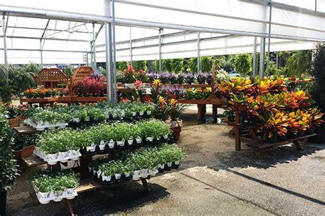 garden centers in houston best houston garden center kingwood tx warren s