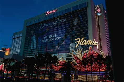 44731 Flamingo Hotel Las Vegas Discount Codes by Flamingo Deals Las Vegas Recent Deals