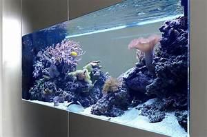 Aquarium Als Raumteiler : raumteiler b ro aquarium ideen pinterest raumteiler ~ Michelbontemps.com Haus und Dekorationen