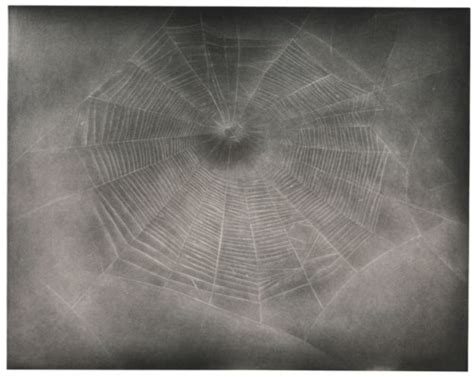 VIJA CELMINS (B. 1938), Untitled (Web 3) | Christie's