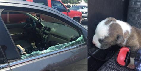 policia revienta la ventana de  coche al sol