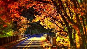 Hd wallpapers beautiful scenery (40 Wallpapers) – Adorable ...